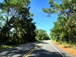 Ocracoke Main Road, 2015.