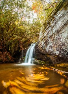 Autumn colors at a North Carolina waterfall located in the Pisgah National Forest. 2015.