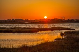 Sunset at the Croatan National Forest, early May 2016.