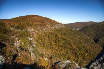 Bright Autumn trees along Linville Gorge, October 2016