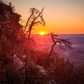 Sunrise between a couple of gangly trees this morning at Pilot Mountain State Park. A brisk fall morning is a great way to get the day started! Early November 2016