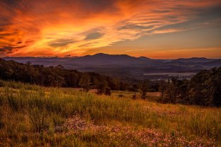 Fiery sunset at a field full of wildflowers in Rocky Mount, VA, looking at Cahas Mountain.
