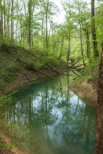 View of the Green River at Mammoth Cave National Park. 2017.