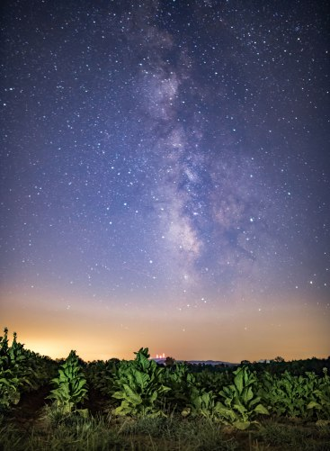 Milky Way, North Carolina, nc, tobacco