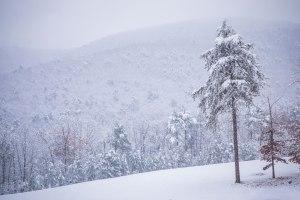 hanging rock, hanging rock state park, snow, December