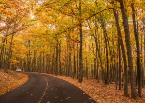 pilot mountain, state park, North Carolina, autumn