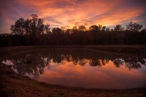 sunset, nc, Greensboro, autumn