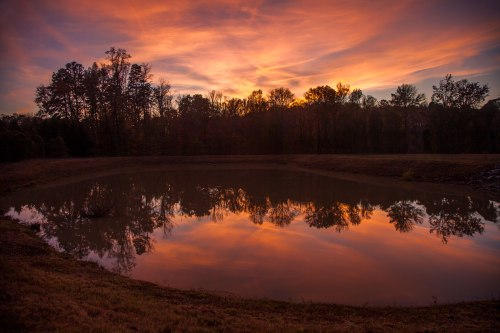 sunset, nc, Greensboro, autumn