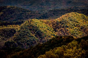 Boone; Blue Ridge Mountains; Blue Ridge Parkway; Autumn; Fall; North Carolina