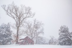 Farm in Summerfield NC following 8 inches of snow.