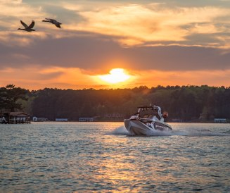 Sunset and a fortunate moment on Lake Gaston, in Halifax County NC. I couldn't have asked the geese to time their fly-by better over the gorgeous wake surfing boat
