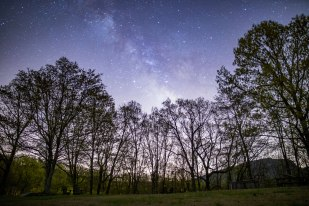 Milky Way above trees and silhouette of Moore's Knob from the lodge at Singletree Gun and Plow in Danbury, NC