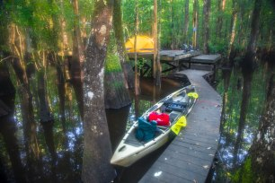 Camping at a river platform in eastern North Carolina, one of many camping platforms located along the Roanoke River near the coast. These platforms are secluded and many are only accessible by kayak.