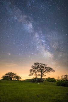 Milky Way above the trees on a rolling field in Floyd, VA, captured alongside of the Blue Ridge Parkway