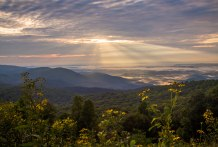 Morning rays along the Blue Ridge Parkway in southern Virginia. The wildflowers and clouds in the valleys soaked by light made for an extra special moment.