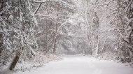 Greensboro, snow, storm, north carolina
